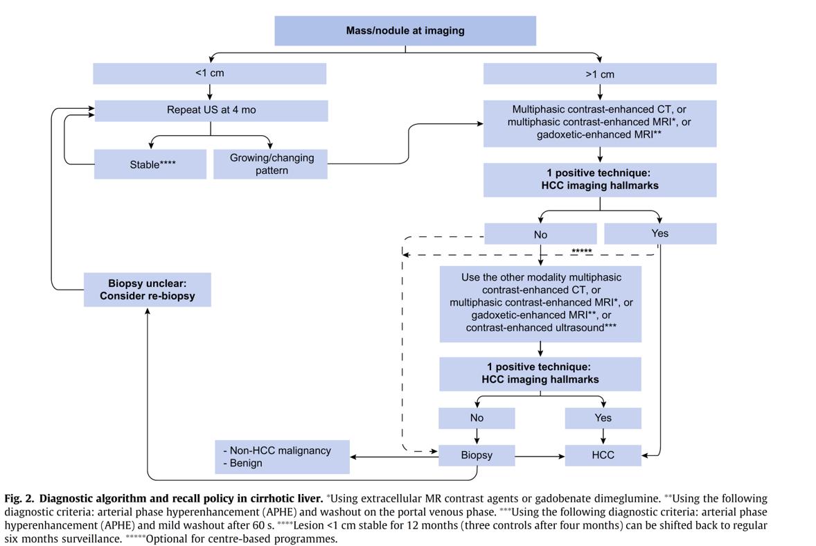 liver nodule diagnostic algorithm EASL guideline